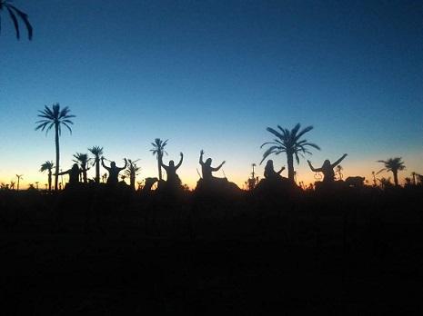 Balade à dos de Dromadaire au coucher du soleil palmeraie
